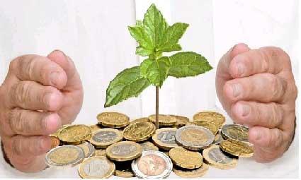 """大部分省市社保费率超过40% 小微企业""""涨不起工资"""""""